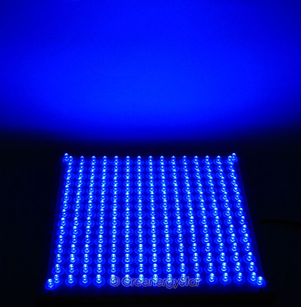 Blue Light Hazard Led